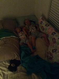They normally drive each other crazy at bedtime, but this night they snuggled up together and went to sleep.