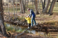 Daddy and Caedmon crossing the log.