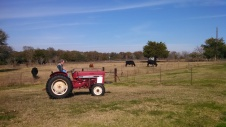 Malakai and Garlyn driving the tractor.