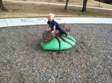 Malakai thought this giant ant was awesome!